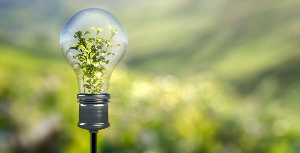 Antizyklische Investments und Nachhaltigkeit für den KENFO
