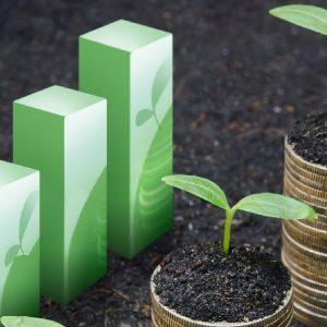 Nachhaltige Investitionen erweisen sich als robust