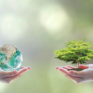Clartan und Ethos lancieren Nachhaltigkeitsfonds